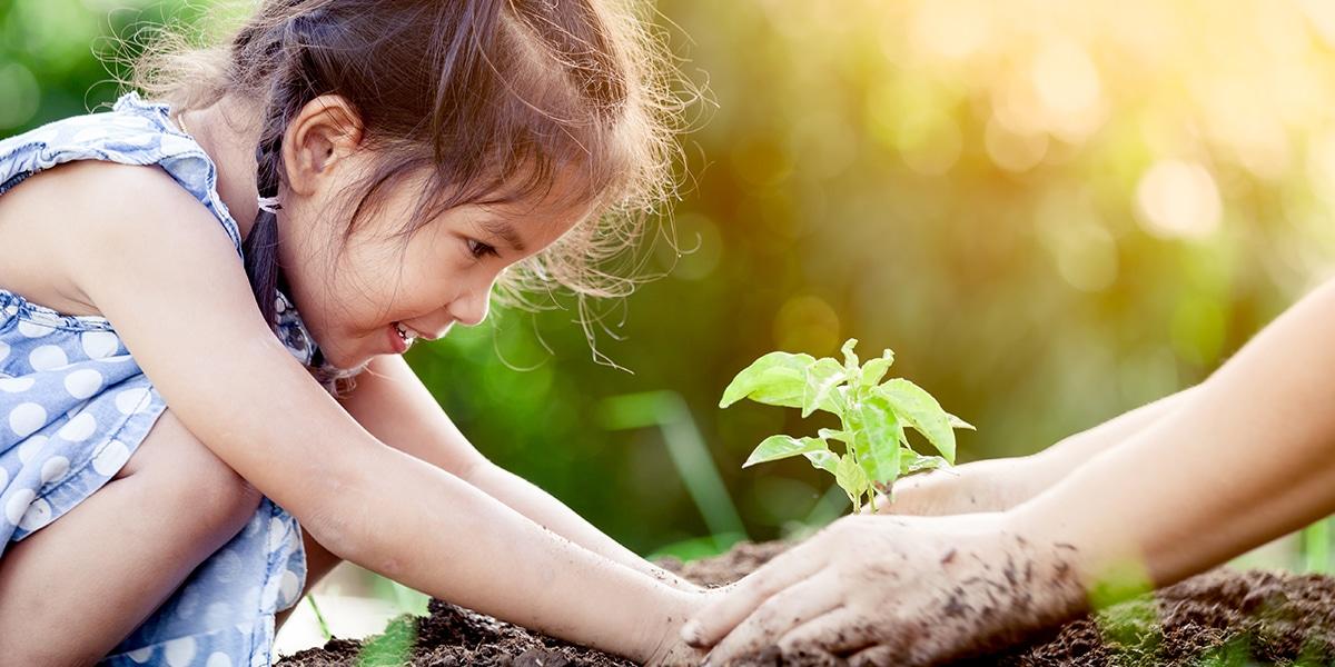 Child Grow Garden